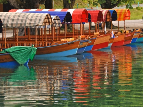 Traditional Pletna boats in Lake Bled