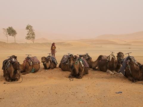 Sandstorm in the Sahara Desert in Erfoud